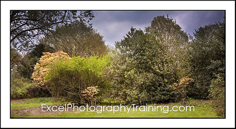 Kent Photography Training Courses